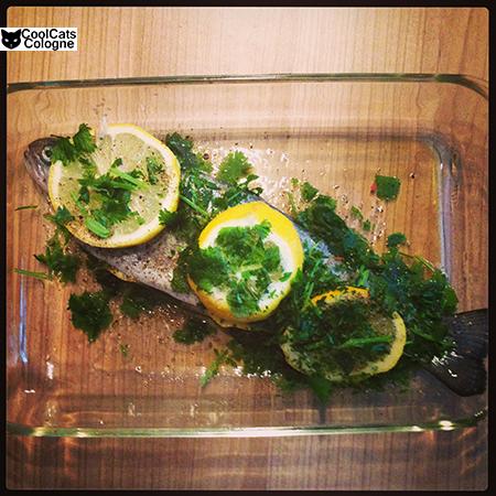 Instagram #Fish