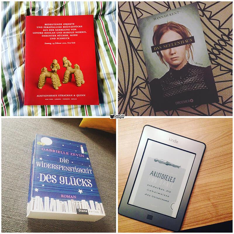 Bücher Januar 2016